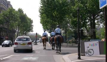 medium_cheval.JPG