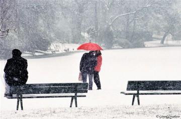 120026_paris_petite_neige_sur_le_lac_daumesnil.jpg