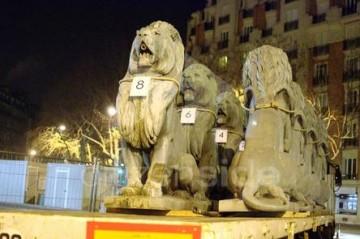 359352-lions2.jpg