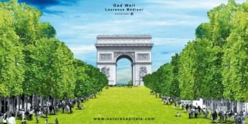 nature-capitale-champs-elysées2-500x250.jpg