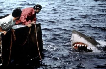 dents-de-la-mer-1975-08-g.jpg